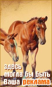 Акт приема передачи лошади образец