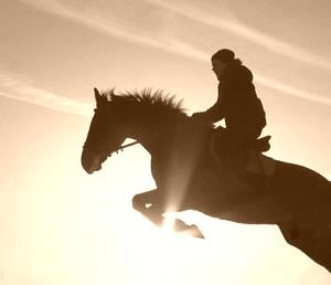 Лошадь с всадником в прыжке